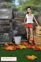 #Fall #Harvest Separates for Barbie and Other Fashion #Dolls w/FREE #Patterns @ ChellyWood.com